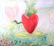Het versluierde hart