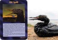 olie-vogels