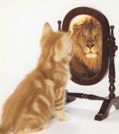 blog-kijkje-in-de-spiegel